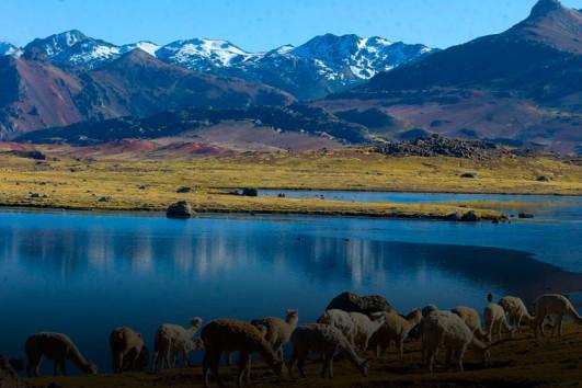 Tours en Huancavelica